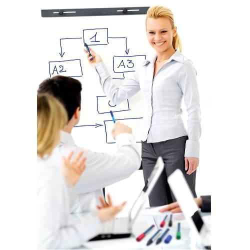 Marker-whiteboard-si-flipchart-SCHNEIDER-290-3
